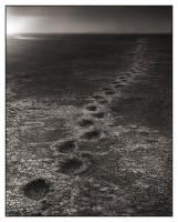 Elephant Footprints, Amboseli 2012
