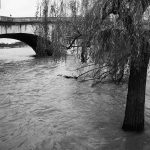 Today's Picture : La Seine en crue au Pont Royal